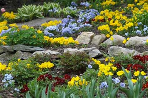 pictures of rock gardens about rock gardens howstuffworks