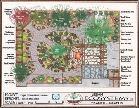 permaculture garden layout permaculture garden layout permaculture gardening and