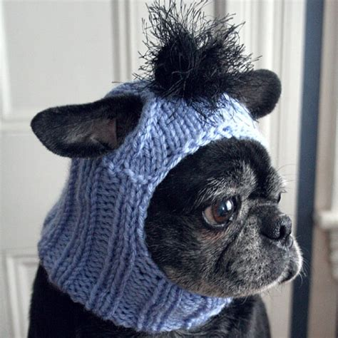 knitted hats for dogs pin by haid spence on pug pics