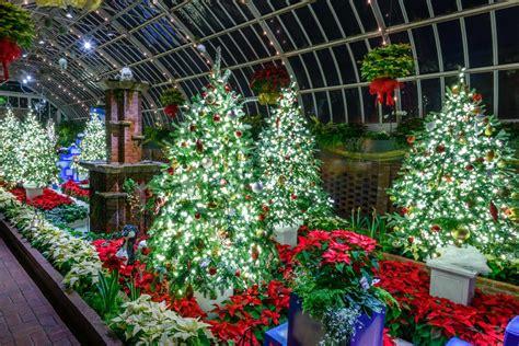winter flower garden winter flower show and light garden magic