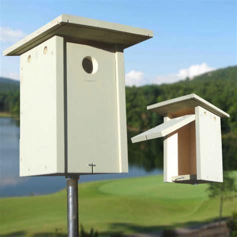 mountain bluebird house plans bluebird nestbox plans