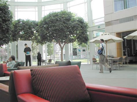 headquarters inside inside apple hq apple gazette