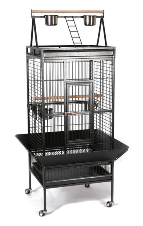 cage pour perroquet voliere cage pour perruches galio animaloo