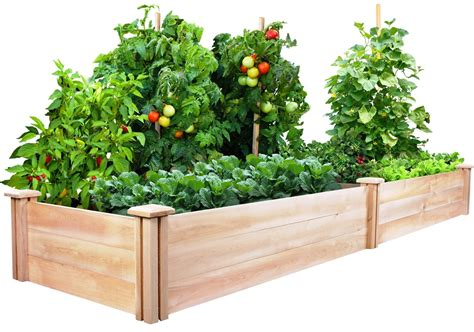 how to set up a vegetable garden bed raised vegetable garden beds let s grow vegetables