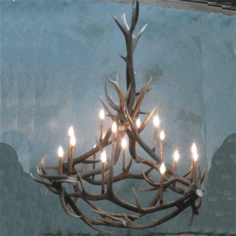 elk chandelier peak quot big nelson quot elk antler chandelier 16 light