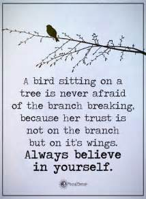 tree is up quotes best 25 tree quotes ideas on quotes on fear