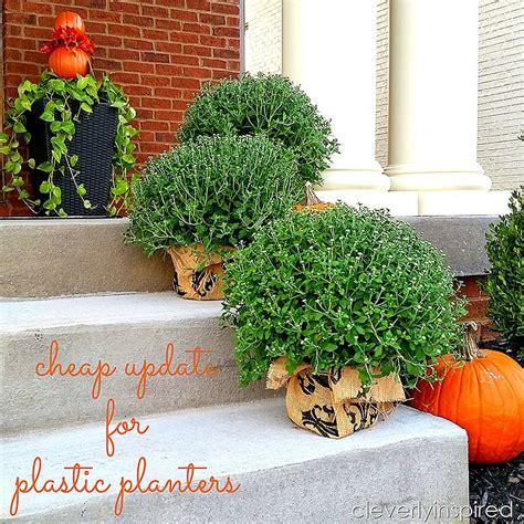 cheap plastic planters cheap update for plastic planters cleverly inspired