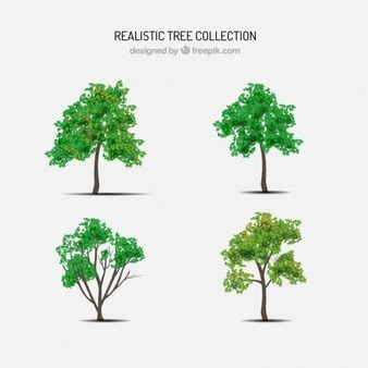 tree realistic realistic tree vectors photos and psd files free