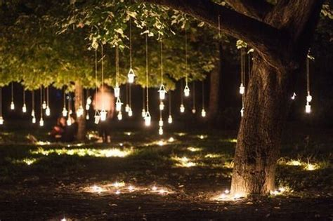 light up trees for weddings hanging tree lights landscape lighting