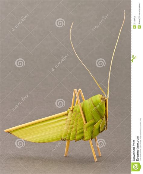 origami grasshopper origami grasshopper palm tree leafs royalty free stock photo image 21594435