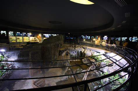 aquarium du palais de la porte dor 233 e wikiwand