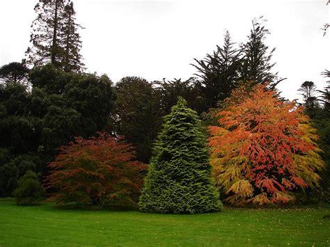 Der Garten Der Toten Bäume by Armadale Castle Romantischer Garten Auf
