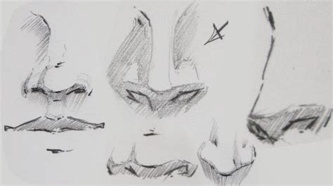 how to draw noses how to draw drawing noses