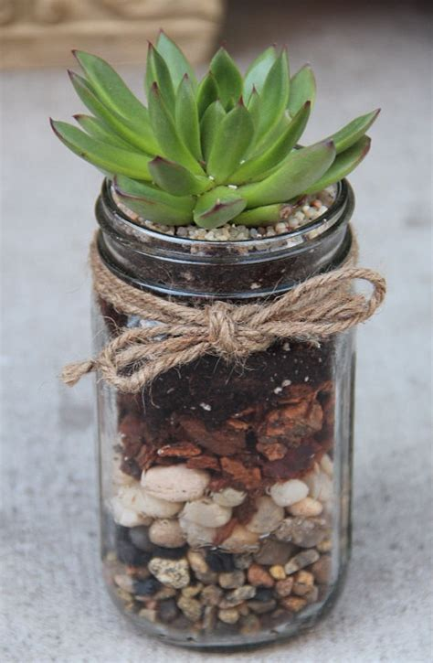 great hostess gifts great hostess gift plant a succulent into a glass jar