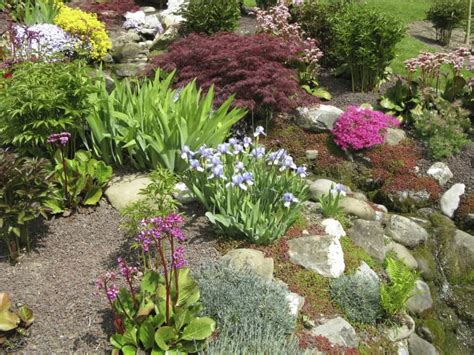backyard rock garden 32 backyard rock garden ideas