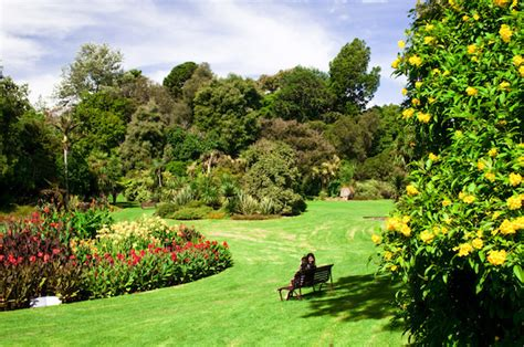 royal botanic gardens melbourne 6 awesome day trips in and around melbourne girly