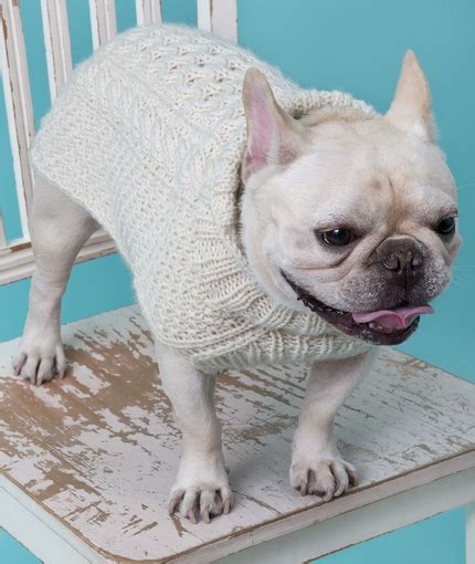 cable knit sweater for dogs cabled sweater