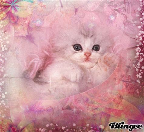 pink cat pink cat picture 130710338 blingee