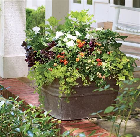 Blumenkübel Bepflanzen Vorschläge by Gro 223 E Blumenk 252 Bel Bepflanzen 60 Ideen Bilder Und Vorschl 228 Ge
