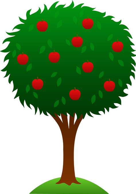 animated tree image animated of a tree clipart