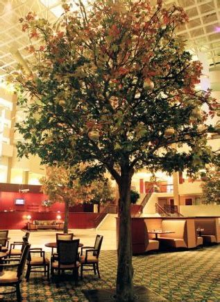 maple tree hospitality 63 best green building sustainability images on green building steel and