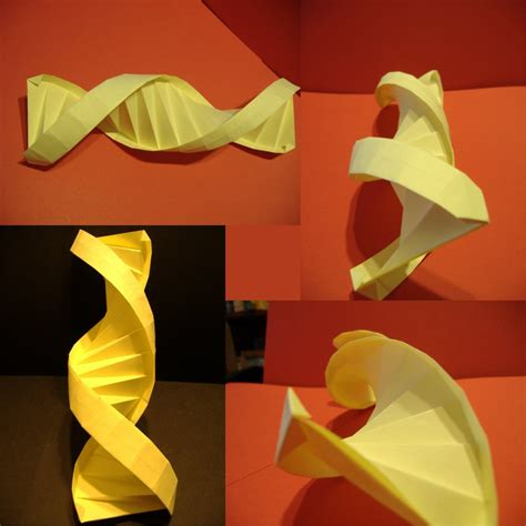 origami dna helix dna or adn helix by foligna on deviantart