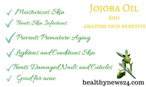 jojoba benefits the top 6 jojoba benefits for skin healthynews24