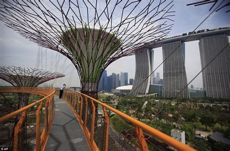 singapore tree gardens by the bay supertrees of singapore prepares for
