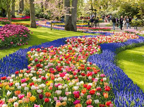 flower gardens in the world keukenhof the world s most stunning flower garden