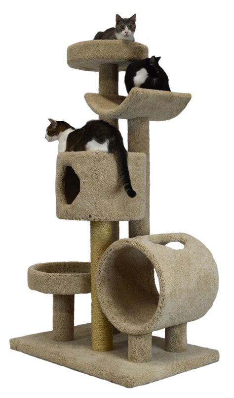 cat trees for large cats cat magazine