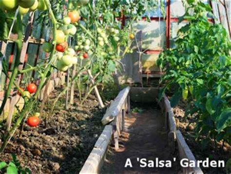 salsa garden layout salsa garden layout garden templates the demo garden