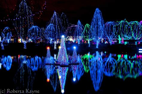 columbus zoo lights admission price zoo lights coupons 2017 2018 best cars reviews