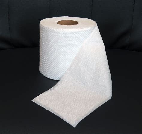 The Great Belize Toilet Paper Debate The Belize Forums