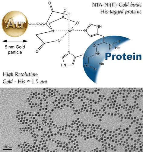 ni nta nanoprobes e news vol 10 no 7 july 25 2009