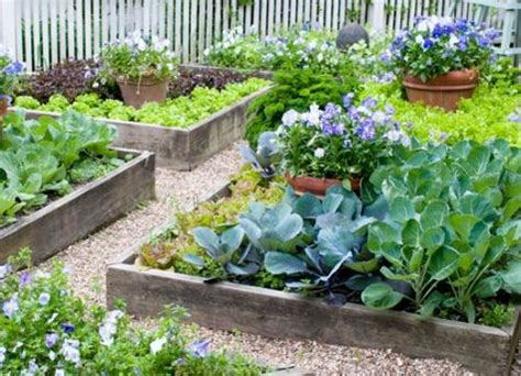 make a vegetable garden how to make a vegetable garden in small spaces 5 ways for