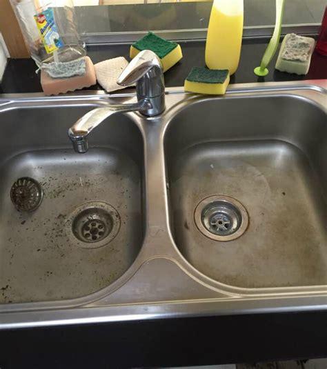 grease clogged kitchen sink clogged sink kitchen designfree