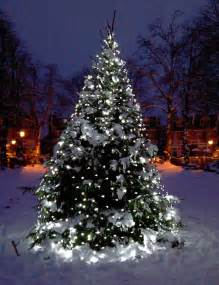 outdoor tree lights sale tree light ideas light ideas