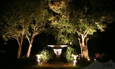 landscape lighting uplight trees 17 best images about landscaping on gardens backyards and inventors