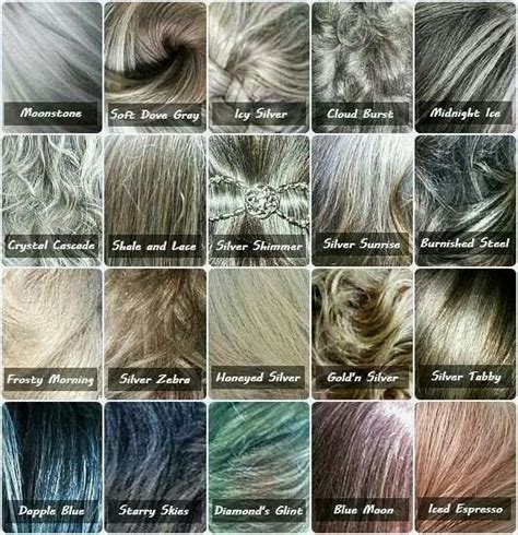 different shades of gray all hair makeover different shades of grey hair colour