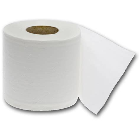 with toilet paper toilet paper 2 ply desperate households
