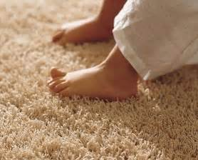 alfombras de pelo largo online alfombras pelo largo de kp vilmupa