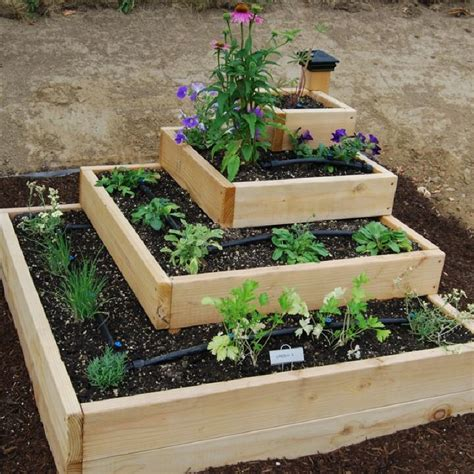 best vegetables for small garden small vegetable garden ideas for limited space margarite