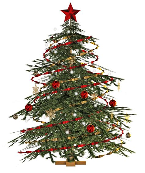 buy small tree where to buy trees decorations in singapore