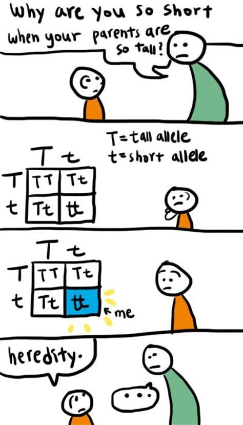 17 Best images about Genetics, denim fun facts! on ... Genetics Jokes