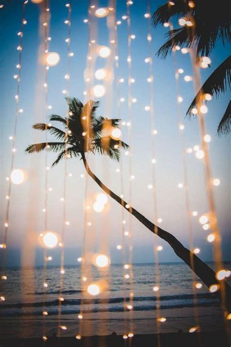 summer tree lights i need vitamin sea leather wine