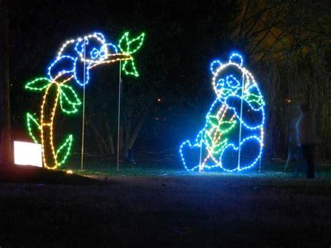 washington dc zoo lights light up with a trip to the zoo petslady