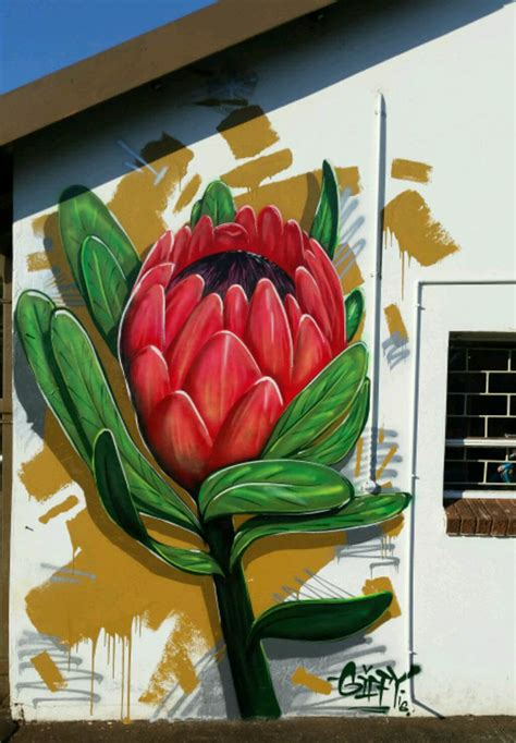 spray painting in kzn giffy duminy flower artist gifford graffiti spray
