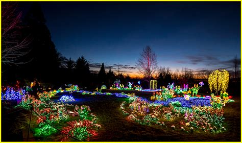 botanical garden of lights sunset at bellevue botanical garden lights the annual