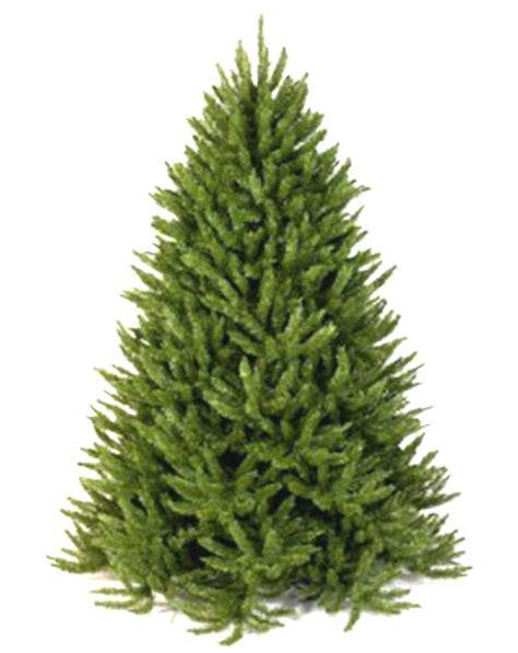 frasier fir artificial tree artificial trees made in usa