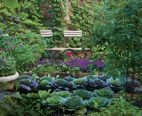kitchen vegetable garden who says your kitchen garden can t be beautiful
